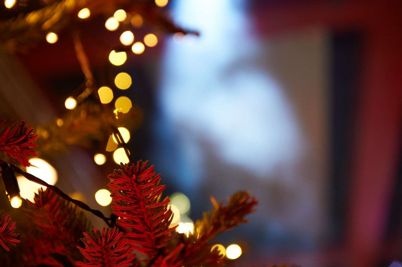 ferrero-xmas-party-2016-lumières-festive-projet-carte-blanche