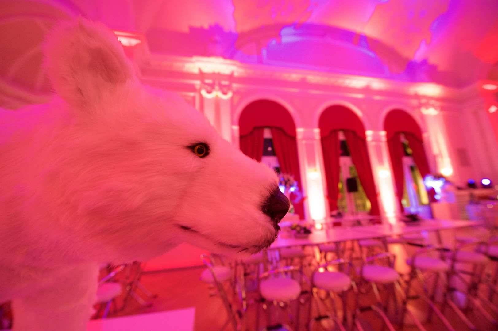 xmas-party-loyens-loeff-2014-group-project-christmas-lux